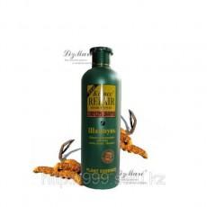 Шампунь для волос Кордицепс Бэлисс, 500мл.  | Био Маркет